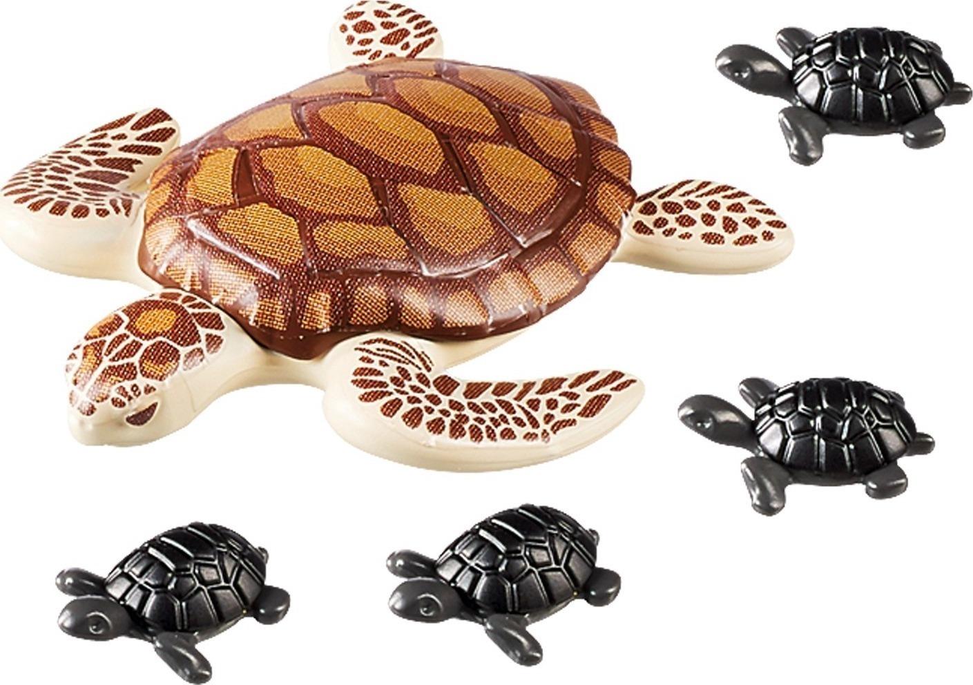 χελώνα dating 19 χρονών τύπος που χρονολογείται ένα 21 χρονών