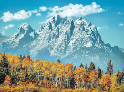 Grand Teton National Park in Fall 500pcs (35034) Clementoni