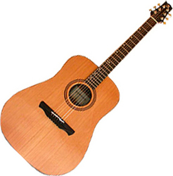 Alhambra NW-1 Acoustic Guitar