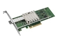 Intel Ethernet SRV Adapter X520-LR1