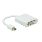 Roline mini DisplayPort male - DVI-D female (12.03.3128)