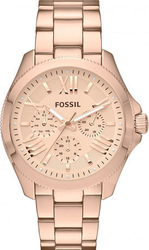 Fossil Ladies Watch AM4511