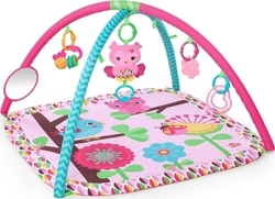 Bright Starts Charming Chirps Activity Gym in Pink