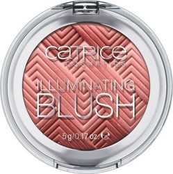 Catrice Cosmetics Illuminating Blush 010 I Am Nuts About You