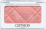 Catrice Cosmetics Defining Blush 100 Rose Couture
