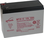 Enersys NP10-12