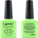 Canni Nail Art Color Coat 082 Milk Green