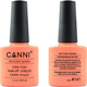 Canni Nail Art Color Coat 141 Shock Orange