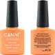 Canni Nail Art Color Coat 139 Melon Orange