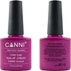 Canni Nail Art Color Coat 019 Dark Fuschia