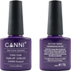 Canni Nail Art Color Coat 176 Aubergine
