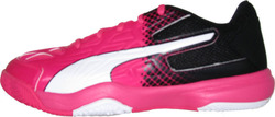 Puma Evospeed Indoor 5.5 103738-01