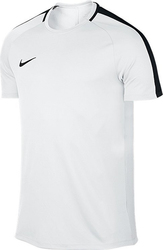 Nike Dry Academy SS Training Top 832967-100