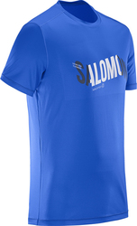 Salomon Outdoor Cosmic Logo 392788