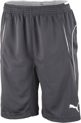 Puma Training Short 653739-37