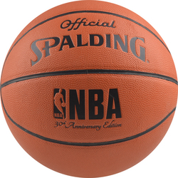 Spalding Indoor/outdoor 74-567Z1