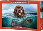 Big Brown 1000pcs (C-103478) Castorland