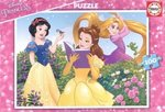 Princess 100pcs (17167) Educa