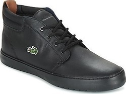 Lacoste Ampthill Terra 734CAM0002024