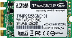 TeamGroup TM4PS5 256GB