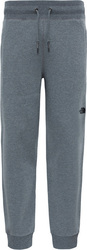 The North Face NSE Pant T0CG25JBV CG25JBV