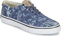 Xαμηλά Sneakers Sperry Top-Sider STRIPER CVO CHAMBRAY