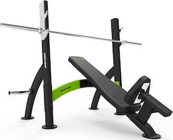 Bodytone Olympic Inclined Chest Press SRB07-E