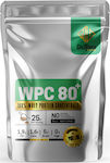 GoldTouch Nutrition WPC 80+ 1000gr Natural