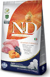 N&D Grain Free Pumpkin Lamb & Blueberry Puppy Medium & Maxi 12kg