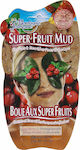 Montagne Jeunesse Super Fruit Mud Goji Berry & Pomegranate 15gr