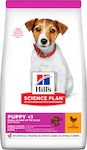 Hill's Science Plan Puppy Small & Mini Chicken 3kg