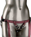 Calexotics Her Royal Harness Crotchless Regal Duchess Red