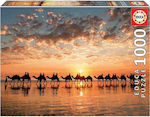 Golden Sunset on Cable Beach 1000pcs